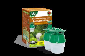 Buxus en andere ziektes