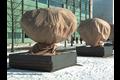 Hwtc cupa beschermhoes winter 2x2,4 m,  , 100 gr., 1 st./verp.