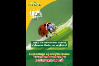 ECOSTYLE Aaltjes Larven lieveheersbeestje tegen bladluis 50 STUKS